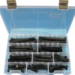 M10 1.25 Fine 10.9 Bolt Assortment